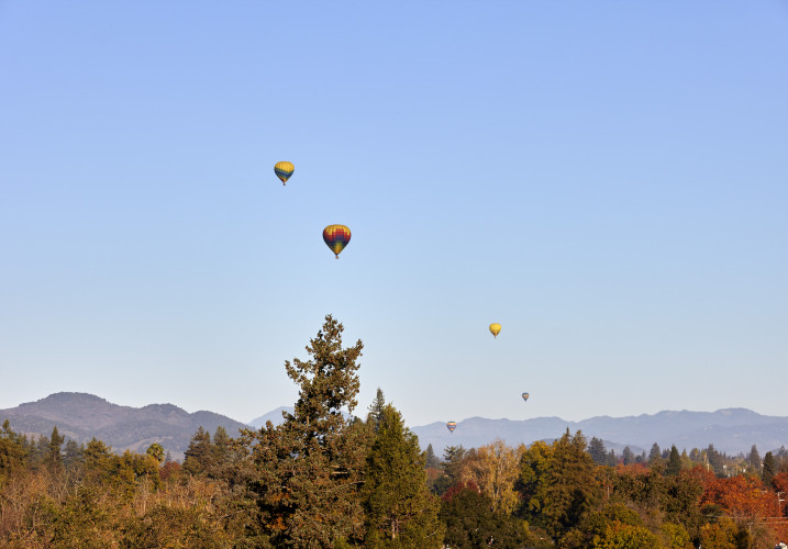 Archer Hotel Napa_Rooftop View_Balloons